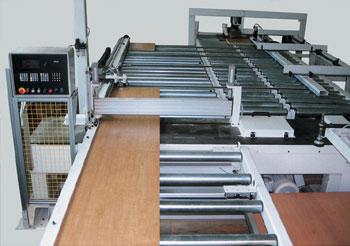 kaufen Sondermaschinen Plattenzuschnittsäge