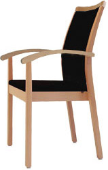 kaufen Hochlehner Armlehnstuhl HL01A86