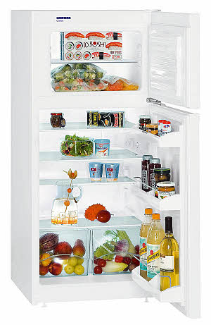 kaufen Kühl- und Gefriergeräte Topfreezer CT 2011 Comfort