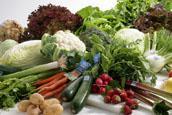 Tiroler Bio-Gemüse frisch und saisonal