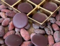 Chocuisite = Excuisite Schokolade