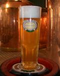 Salm Bräu Pils Bier