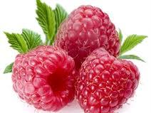Erdbeer- und Himbeerpüree