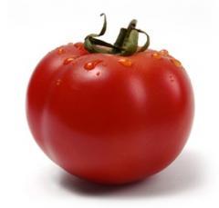 Tomaten Bio-Paradeiser