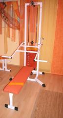 1-Stationen Body-Tower 100kg