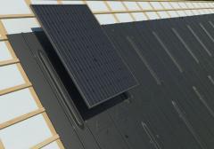 Solarmodul Sunworld SW 220M