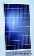 Solarmodule Schott Poly TM245