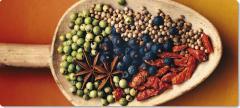 Bio-Tee und Kräuter
