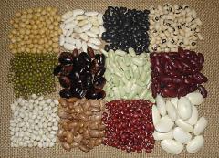 Super Food Organic