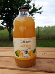 Сок лимона и мяты (100% ФРУКТОВ