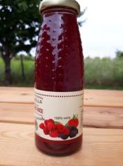 Appel - bosvruchten - sap, 100% natuurlijk zonder