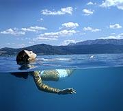 Auftrag Schwimmen & Wassersport