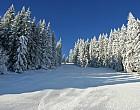 Auftrag Schneeschuh-Wandern