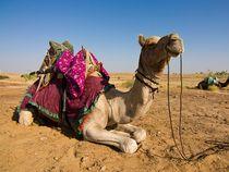 Rundreise: Ägypten - Westsahara mit dem Geländewagen