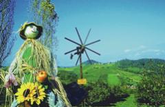 Europareisen Graz & das Südsteirische Weinland