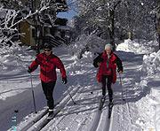 Skifahren & Langlaufen